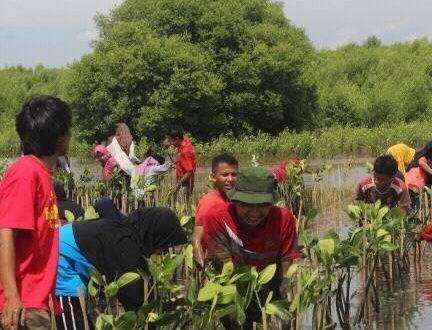 Bersama IKAHIMBI, HMJ Biologi Hijaukan Pesisir Mangunharjo